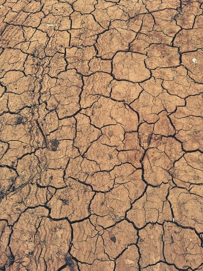 drought global