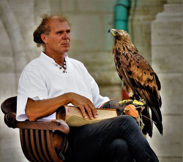 Man With Golden Eagle Sitting On Chair