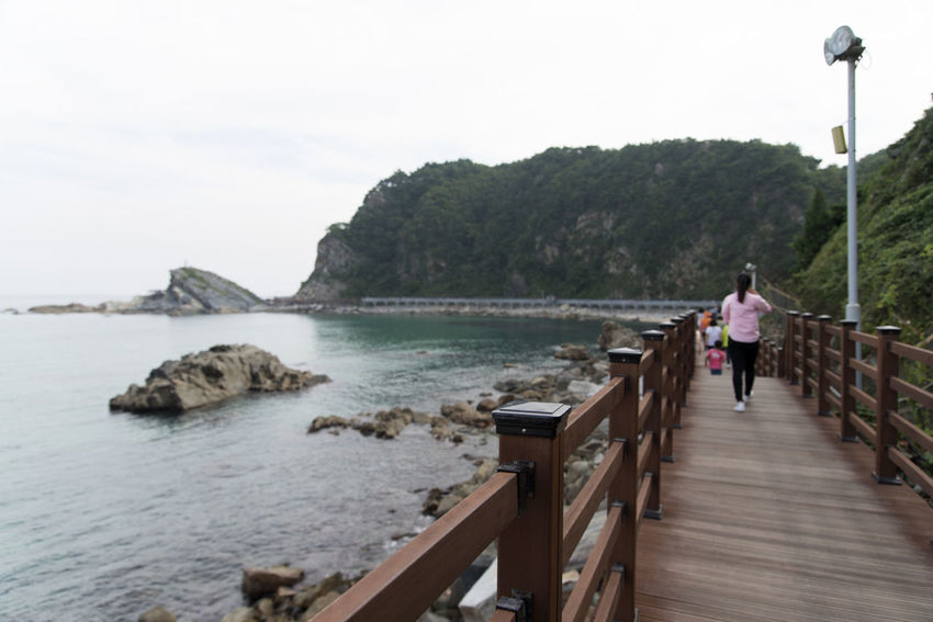 """famous seaside called """"Badabuchaegil"""" at Jeongjdongjin in Gangreung, Gaongwondo, South Korea Badabuchaegil Gangreung Jeongdongjin Beauty In Nature Day Full Length Leisure Activity Lifestyles Men Nature One Person Outdoors People Railing Real People Scenics Sea Seaside Sky Standing Tourism Place Tree Walking Water Women"""