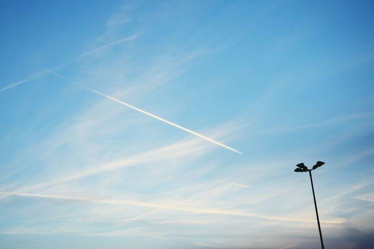 Zorro Signature Sky