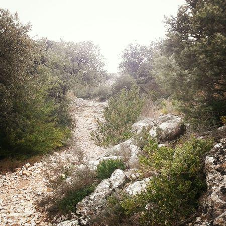 Sur le GR42.. Trailrunning Trail Running Trail Running Running Time Runner Run Course à Pied Courir Gard