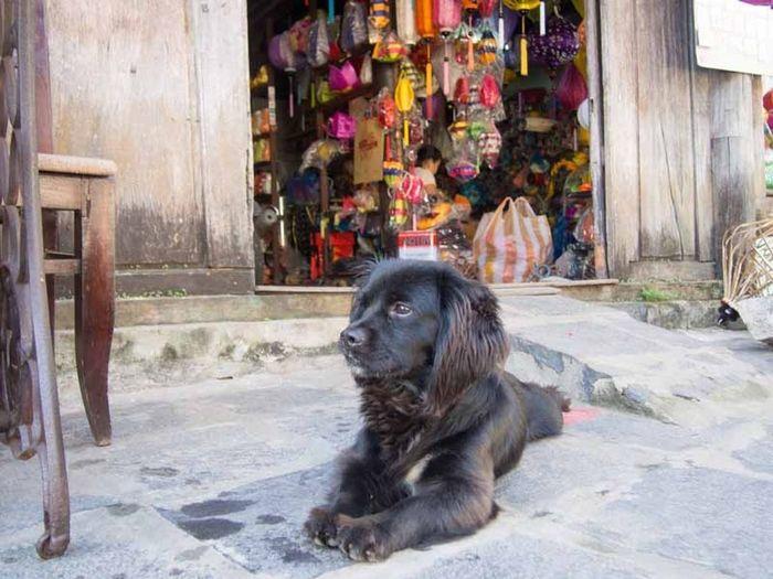 First Eyeem Photo Hoi-an Vietnam