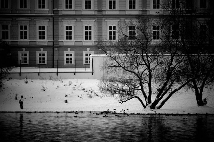 Winter in Prague. Winter BWWinter Black & White Monochrome