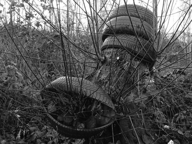Tree Outdoors Day Nature Bare Tree Monster Tyres Car Tyre Art Installation Forest Black And White Collection  Black And White Bidston Moss Forestry Commission Wirral No People Cloud - Sky Silhouette