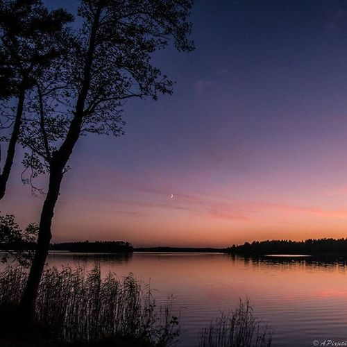 Sometimes nature is so beautiful and breathtaking. Fotocatchersmember Ig_finland Exclusive_landscap Excellent_nature Ig_myshot Ig_dynamic Nature_brilliance Sunrise_and_shorelines 9vaga_skyandviews9 Igpowerclub Photomagicworld Allnatureshots Trb_sunsetsfx Ig_countryside Love_all_sky Picture_to_keep Astounding_shots Nature_wizards Landscape_captures Fotofanatics_nature_ Nature_perfection Instanaturefriends_ Fiftyshades_of_twilight Main_vision Heart_imprint ig_sharepoint bestnatureshots tree_brilliance worldbestgram nature_perfection