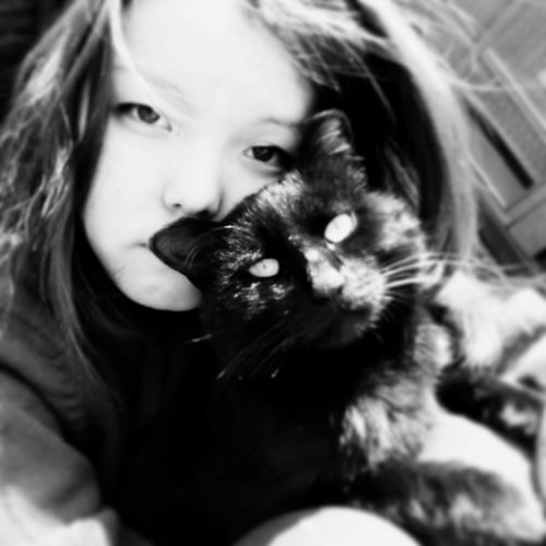 Blackandwhite Cat Mylove Cute Cats