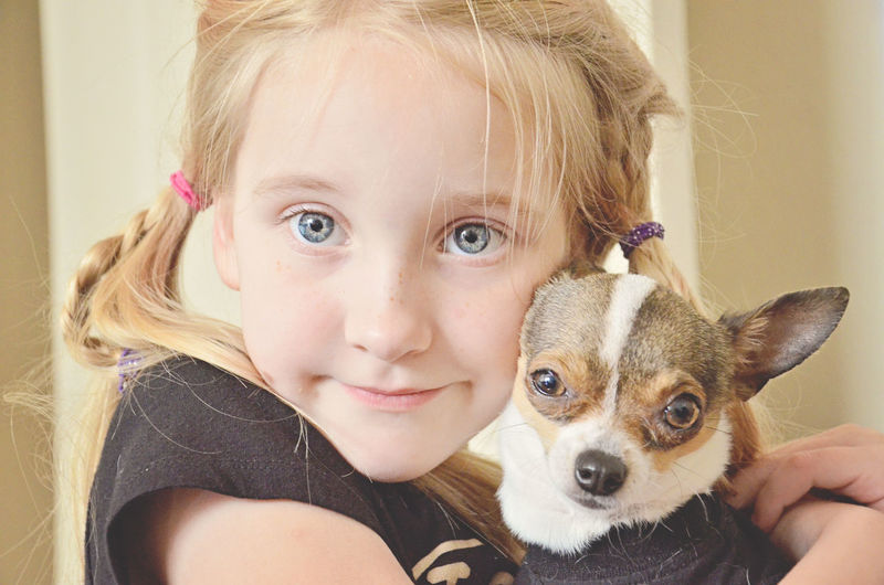 Close-up portrait of cute girl with chihuahua