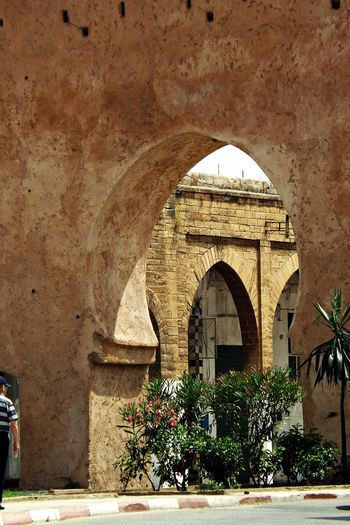 Ancient Civilization Arch Architecture Building Exterior Built Structure Day Growth Histoire Historique Indoors  Maroc Nature No People Plant Porte Ville Ancienne