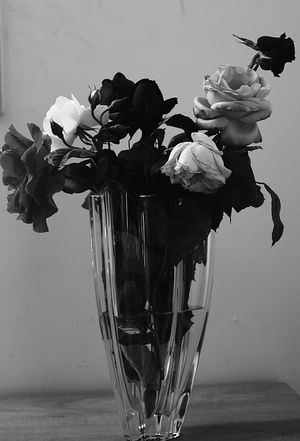 While I'm wide eyed and I'm so down caught in the middle Flower Vase Close-up Served Single Rose Rose - Flower Single Flower Wild Rose Bouquet Flower Head Flower Arrangement Pastry