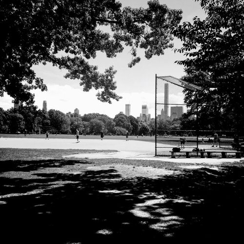 CentralPark Black And White Sports New York Manhattan NYC LIFE ♥ NYC Photography NYC Skyline