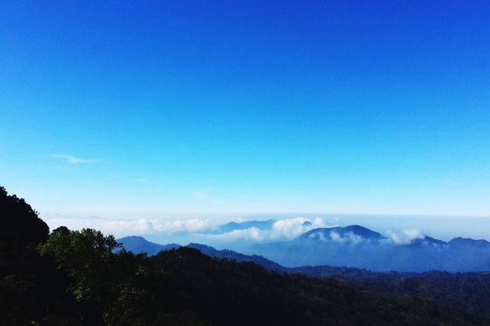 Top Of The Mountains Mountain View Mountain Asia Mountains North Of Thailand Foggy Morning Fog Fog And Mountains Nature Blue Sky Bright Sky Sky Fresh Oxigen Breathtaking View Deep Breath Hill Morning Relax Landscape Original Experiences