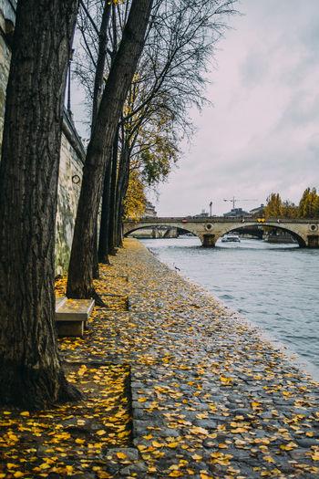 Paris Autumn Fall Water Waterfront Seine Leaves Bridge Architecture River