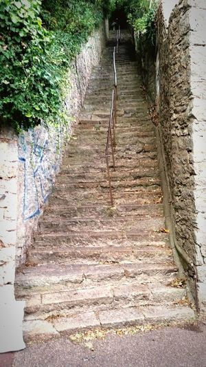 Steps Steps And
