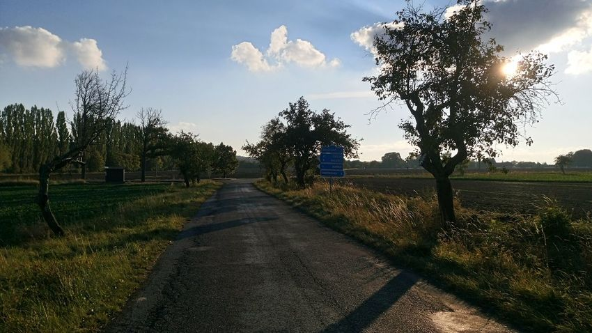 Tree Sunlight The Way Forward Road Sky Tranquil Scene Grass Tranquility Field Diminishing Perspective Sunbeam Empty Road Growth Lens Flare Sunny Sun Cloud Scenics Nature Day Xperiaz Czech Republic First Eyeem Photo XPERIA XperiaM5