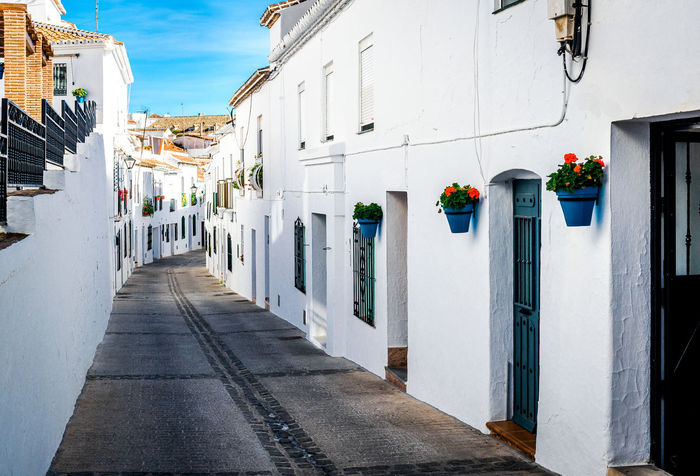 Picturesque street of Mijas. Charming white village in Andalusia, Costa del Sol. Southern Spain Andalucía Architecture Blue Building Exterior Built Structure Charming Village Costa Del Sol Empty Street Flower Pots Malaga Mijas Mijas Spain Narrow Street No People Outdoors Perspective Picturesque Residential Building SPAIN Street Sunny Day Town Travel Destinations Village Whitewashed Houses