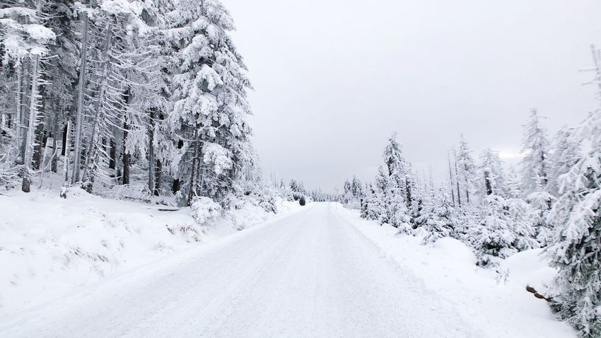 Winter Harz Snow Tree Cold Temperature Winter Plant Road Transportation Direction White Color Covering Scenics - Nature Land Diminishing Perspective Beauty In Nature Day Sky Tranquility No People The Way Forward Nature