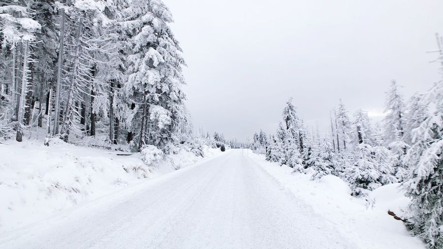 Winter Harz