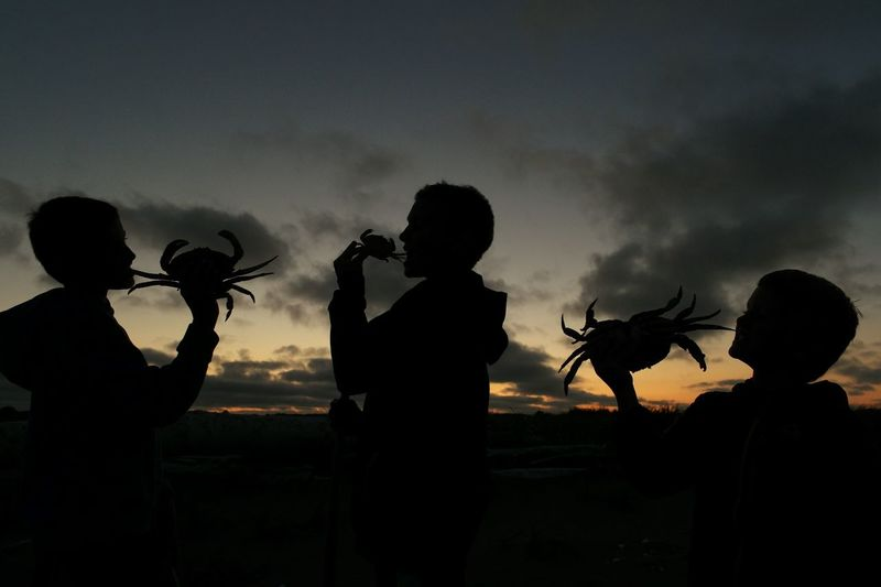 Silhouette friends holding crabs against sky during sunset