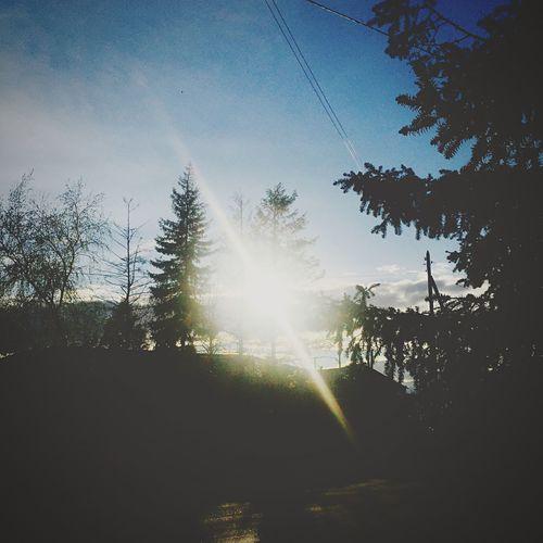 IPhone Nature Sun Sunset