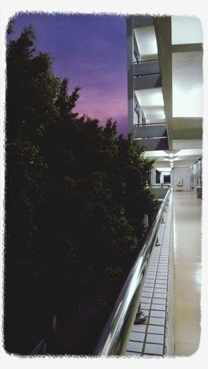 My School~~❤ First Eyeem Photo
