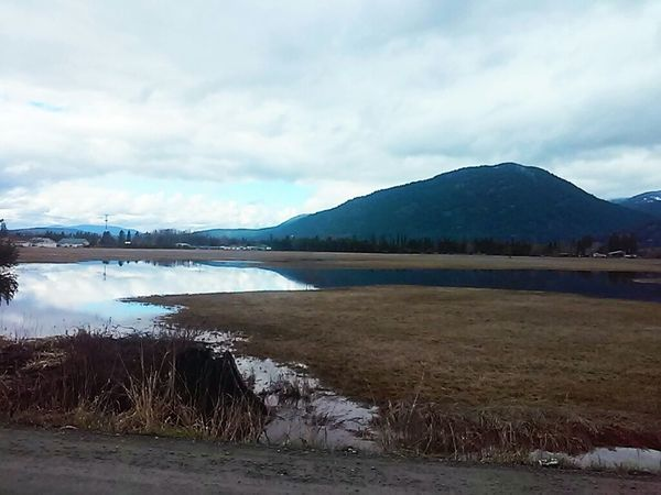 Selkirk Mountains In The Field Reflection