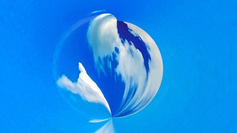 Blue No People Nature Sea Animal Themes Animal Swimming Water Sky