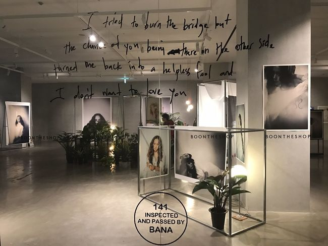 How I will decorate my room. ONE AND ONLY KRYSTAL JUNG. Nature Inspirations Krystal Fx Beautiful People Krystal Beautiful Woman Women Who Inspire You Krystal Jung Lifestyles Faces Of EyeEm Exibition Avenue