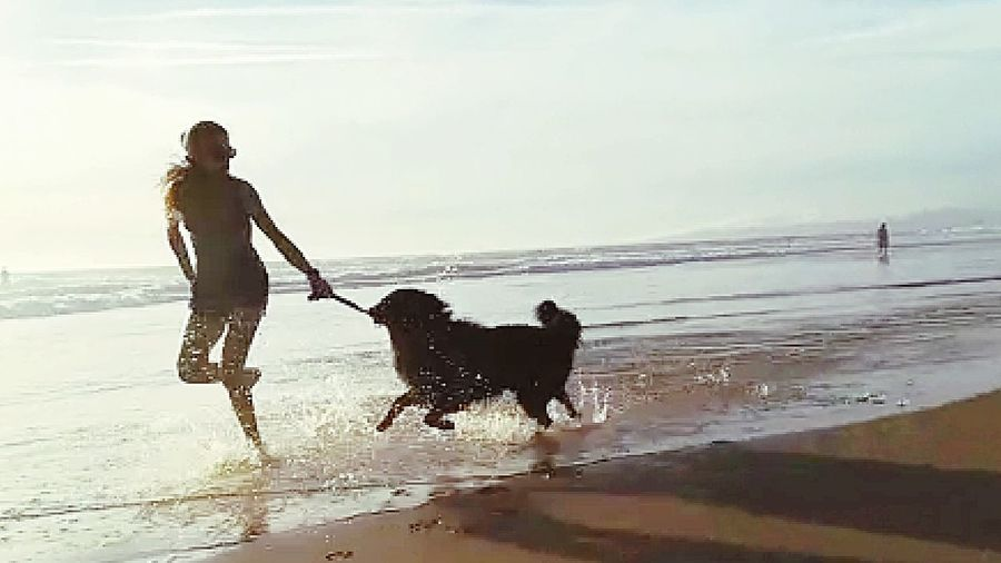 Life is good 🙏🖤 Belgium Shepherd Black Running Water Beach Portugal Happiness Exercise Friendship Pets Beach Water Sea Dog Happiness Playing Sand