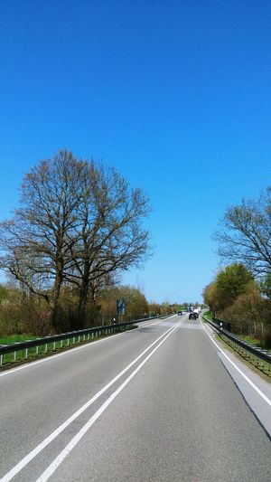 Road amidst trees against clear blue sky
