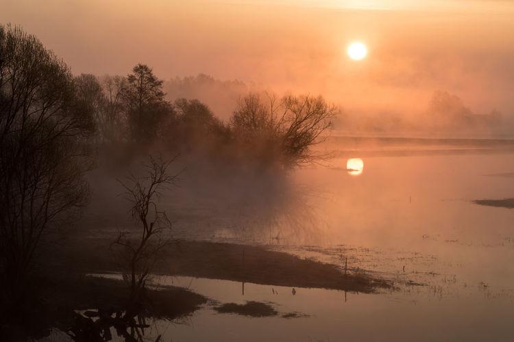 Fog Foggy Morning EyeEm EyeEm Best Shots EyeEm Nature Lover EyeEm Gallery Morning Light Morning Sky Nature Photography Poland Poland Is Beautiful Travel Photography Eye4photography  Poland 💗 Sunrise