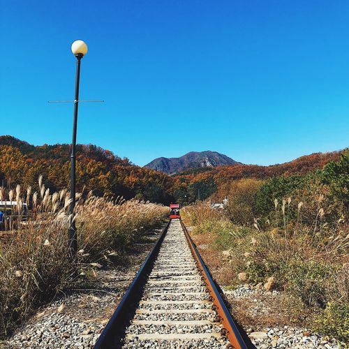 let's ride a bike on railroads Tour Railbike Railway Sky Clear Sky Blue Nature Direction Day No People The Way Forward Plant Outdoors Tree