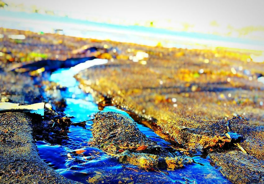 "The KIOMI Collection ""Tides Out""... Jersey Shore Ripples Bokeh Photography Bokehlicious Tranquility Sunshine RAWphotography Clarity Long Branch, NJ Njphotographer Showcase April Textures And Surfaces Water Dof Jerseyshore Nopeople Closeupshot Mypointofview Natural Beauty Exploring Nature Low Angle View Presicion Simplicity Notphotoshopped"
