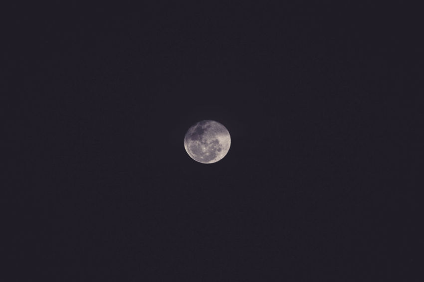EyeEm Selects Moon Night Astronomy Planetary Moon Moon Surface Scenics Tranquility Discovery Low Angle View No People Beauty In Nature Nature Outdoors Half Moon Crescent Space Sky Close-up