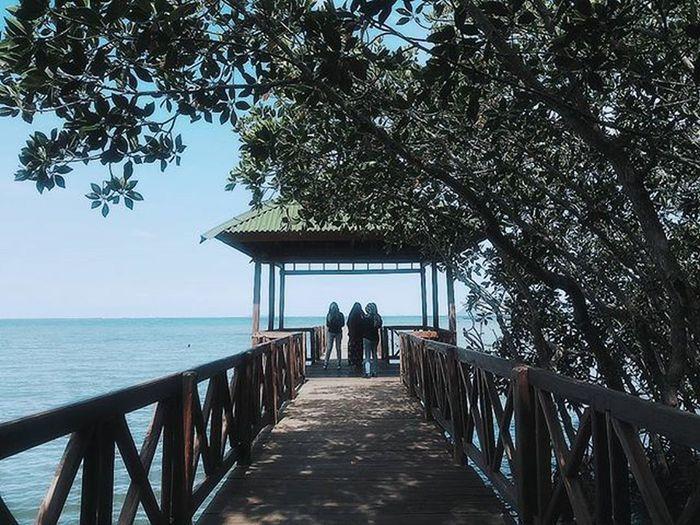 THIS PLACE IS TOO BEAUTIFULL.. Instagram Instagood Instalike Tree Traveller Instamakassar Explore Exploresouthsulawesi Exploremakassar Exploresinjai Bridge Sea Sky Beautifull Wonderfull Makassar Sinjai INDONESIA Indotraveller EyeEm Nature Lover EyeEm Best Shots Beach Sea And Sky