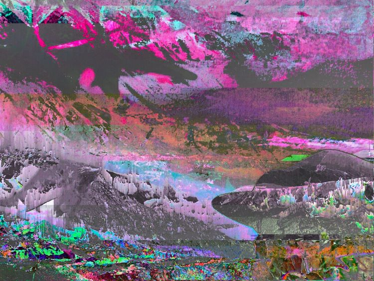 Multi Colored Abstract Purple Outdoors Day Close-up Nature Pink Color