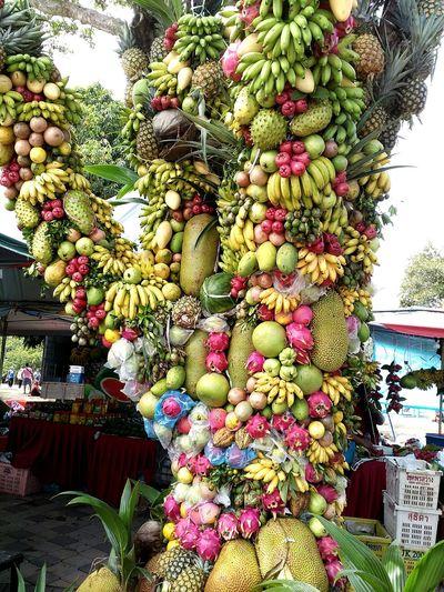 Fruitporn Fruit Tree Fruit Photography Pasir Gudang EyeEm Malaysia Sunny Day 🌞