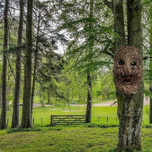 Wicker face in the woods at Belladrum Inverness @dgwgo @ig_scotland @viewsofscotland Instagood Igers IGDaily Instapic Nature Countryside Scotland Highlands Inverness Belladrum Tartanheart Kiltarlity Wickerman Sculpture Art Woods Wood Forest Spooky