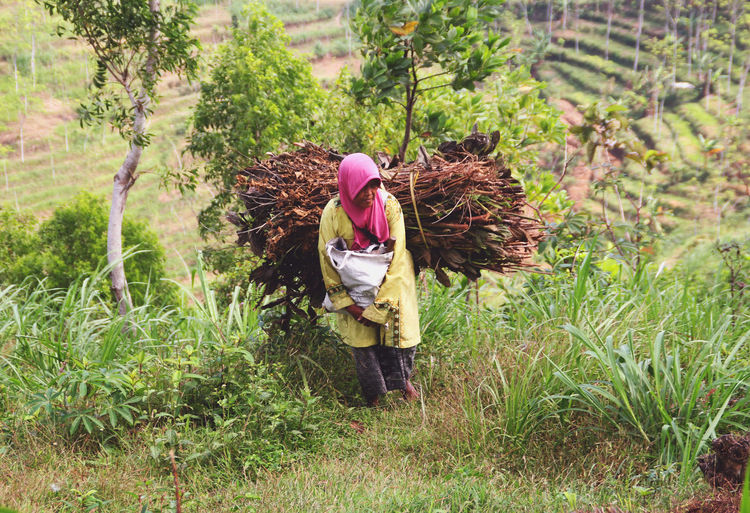 Female farmer carrying firewood while standing on grass
