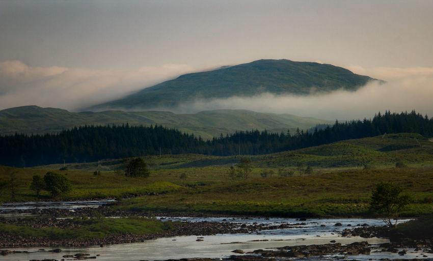 West Highland Way Beauty In Nature Bridge Of Orchy Cloud - Sky Environment Fog Idyllic Land Landscape Mist Mountain Mountain Range Nature No People Non-urban Scene Outdoors Plant Scenics - Nature Sky Tranquil Scene Tranquility Tree Water