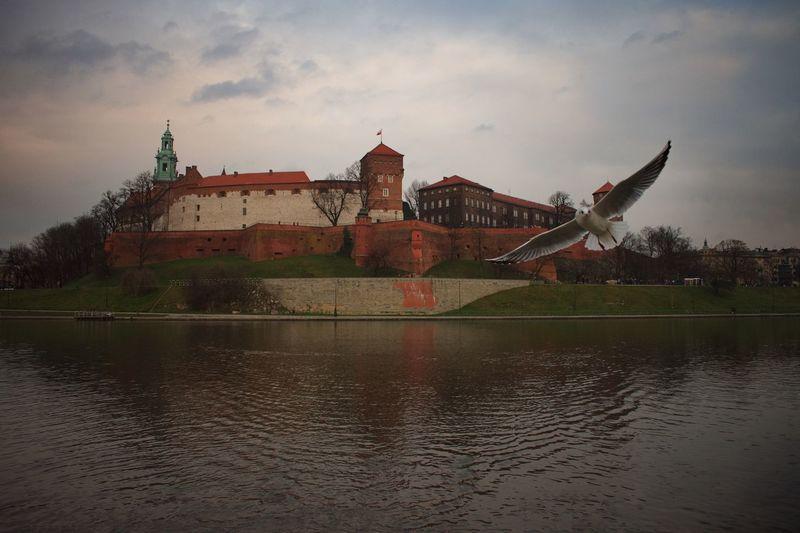 EyeEm Best Shots Wanderlust Wawel  Castle Krakow Poland Architecture Built Structure Sky Water Building Exterior Cloud - Sky No People River Outdoors Travel Destinations Beauty In Nature Nature