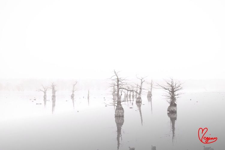 Blackandwhite Landscape Photo Eye4reflections