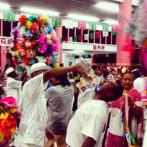 Así celebran a la Virgencita. El baile de cabeza de cochino.