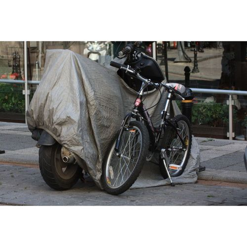 Bicycle Ig_turkey Ig_ikeda Hayatakarken