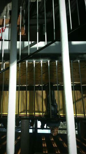 Sunday_flip Stairs Inside Amerika Haus Amerika Haus