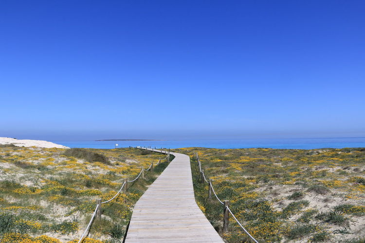 Walkway amidst sea against clear blue sky