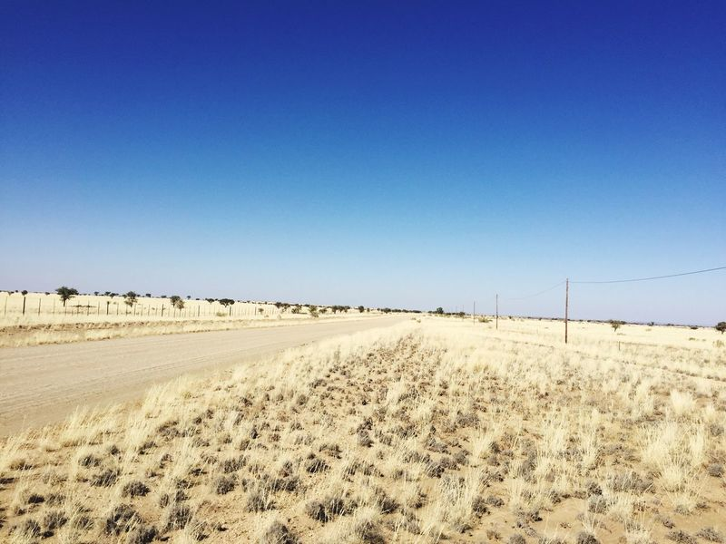 Gravel road Clear Sky Tranquil Scene Nature Outdoors Scenics Field