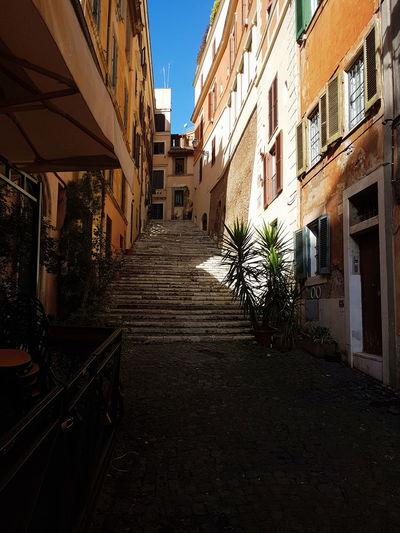 roaming Stairs