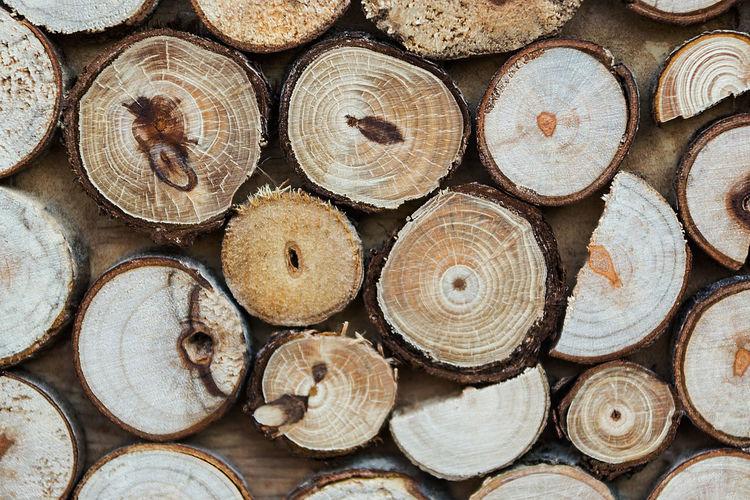 Full frame shot of logs on wall