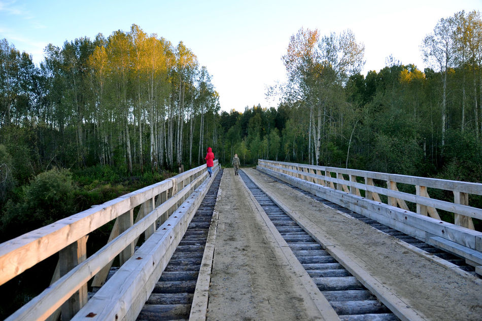Fishing. Tomsk region, Siberia, Russia. Bridge for timber-trucks. Beauty In Nature Bridge - Man Made Structure Bridge For Timber-trucks. Nature Outdoors Russia Siberia The Way Forward Tomsk Region Tree Vanishing Point People And Places