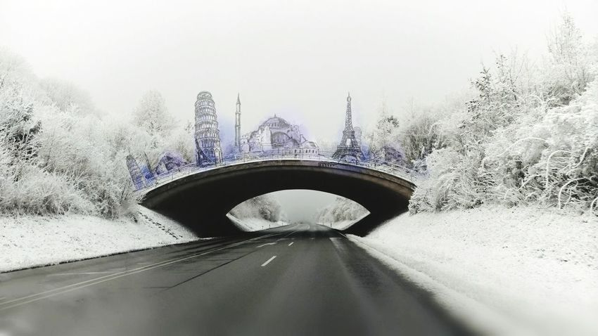 Fog Tree Winter Bridge - Man Made Structure Snow Transportation Cold Temperature Snowing No People Day Architecture Flower Head Egg Yolk Sky Outdoors Beauty In Nature Freshness EyeEmNewHere Paw Print EyeEmNewHere